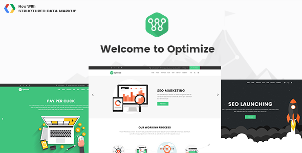 Optimize - SEO, Digital Marketing and Social Media Theme
