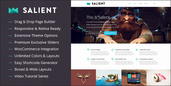 Salient Responsive-Multi-Purpose-Theme